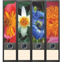 File Art ordneretiketten - Bloemen in de tuin