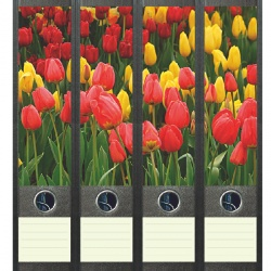 File Art ordneretiketten - Bloeiende tulpen in het veld