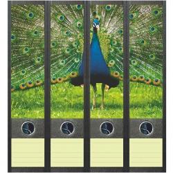 File Art ordneretiketten - Blauwe Pauw
