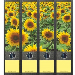 File Art ordneretiketten - Veld Zonnebloemen