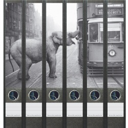 File Art ordneretiketten - Olifant bij tram in zwart wit 6 etiketten