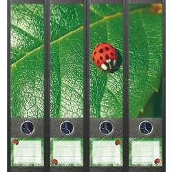 File Art ordneretiketten - Lieveheersbeestje