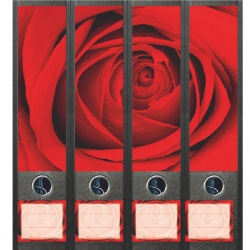 File Art ordneretiketten - In het hart van de roos